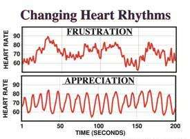 Changing heart rhythms | Dirk Terpstra