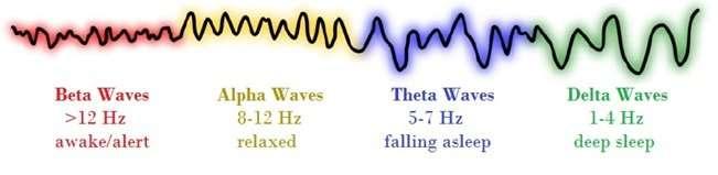 Brainwaves | Dirk Terpstra